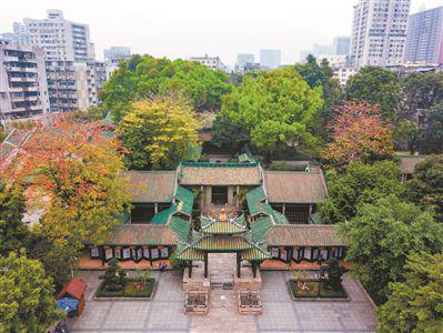 俯瞰五仙观,岭南第一楼被绿树完全庇荫。