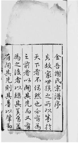 一批珍贵家谱在南京拍卖