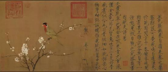 宋赵佶五色鹦鹉图(画心) 绢本53.3x125.1cm