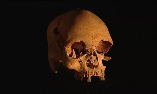 ▲卢西亚,11500年的一具女性头骨,是在美洲大陆发现的最古老的头骨