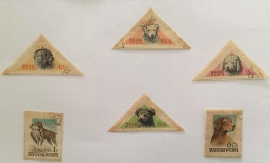 上海小男孩集邮历险记