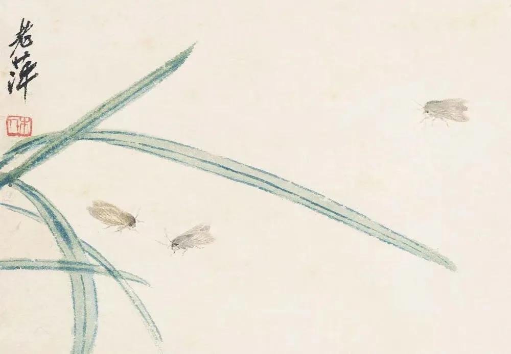 齊白石 草蟲冊頁之三:三蛾圖  北京畫院藏