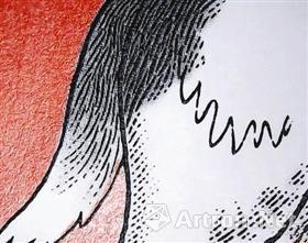 图2 毛发丰富的层次
