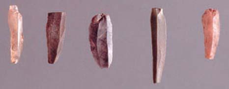 石叶。新石器时代早期昌都卡若遗址出土