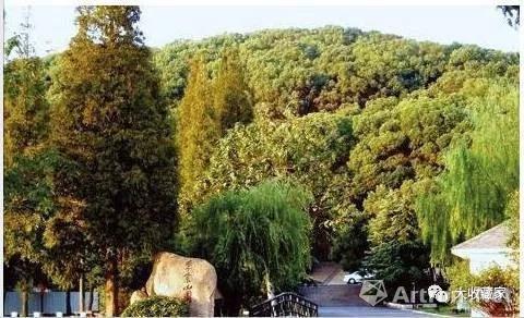 四百年前陈继儒在东佘山脚下的隐居地如今已成了东佘山公园