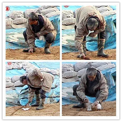 监视镜头中的藤村正在偷埋石块