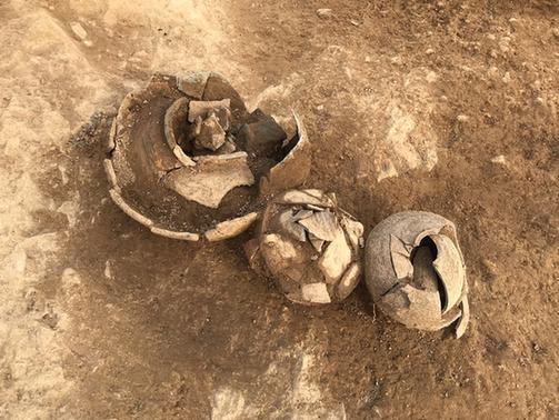 茗山挖掘现场,考古队员挖出几个陶罐。