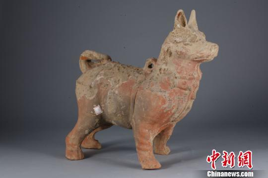 图为重庆万州出土的汉代陶狗。重庆中国三峡博物馆供图
