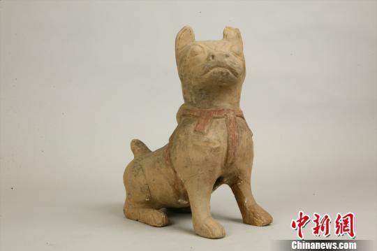 图为重庆丰都出土的东汉彩绘陶狗。重庆中国三峡博物馆供图