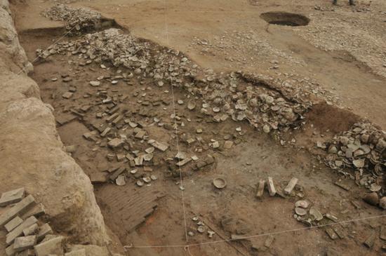 东发掘区⑤层瓷片堆积