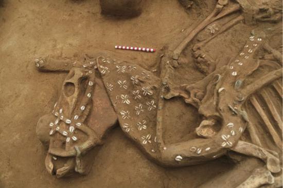河北行唐故郡遗址的精美马具。(社科院考古所供图)
