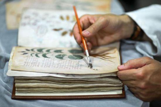 ▲2016年在西班牙进行质量控制的伏尼契手稿的临摹。图片来源:GettyImages