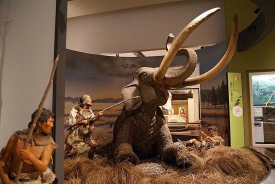 日本旧石器时代前期人类狩猎