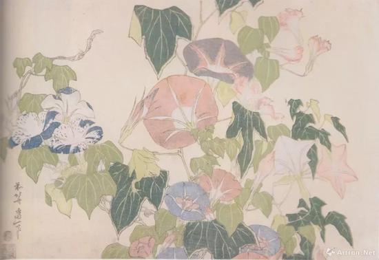 """葛饰北斎""""朝顔に蛙""""、1831-33年顷、横大判锦絵、24 x 36.4cm、ミネアポリス美术馆、p。 175"""