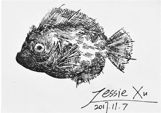 小徐画的鱼