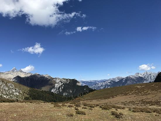 10月17日下午1点多,在海拔4200米以上的高原草甸上。