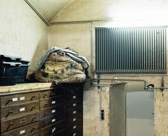 选自Skeletons in the Closet系列,Klaus Pichler摄