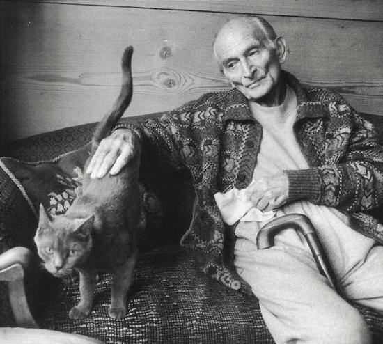 巴尔蒂斯和猫