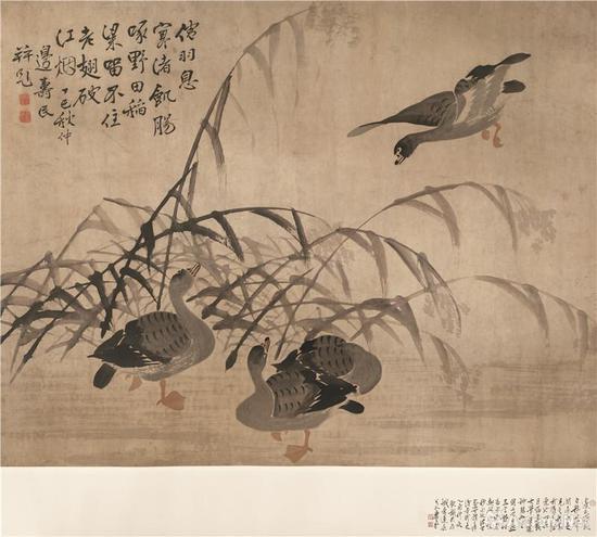 边寿民芦雁图设色纸本120.5x153.5cm