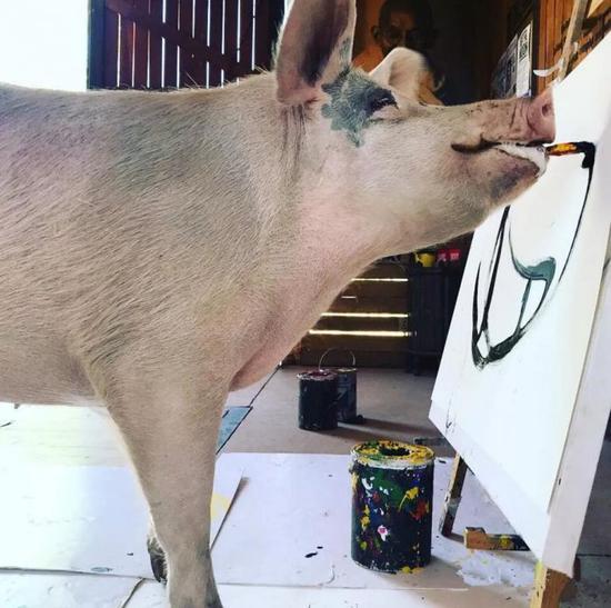 这样看来,看不懂毕加索的抽象画并不可怕,就怕猪也这样画。
