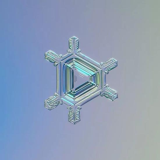 这是用微距拍摄的雪花