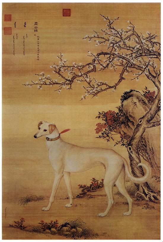 郎世宁 十骏犬图之一 《霜花鹞》台北故宫博物院藏