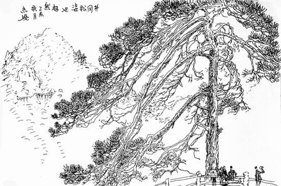 王志安速写作品