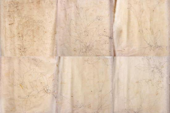 《中科院植物园西双版纳线描1》 手工茶叶纸 30×30×12 2013