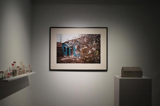 金石,《樱花小院》,综合材料,尺寸可变,2014