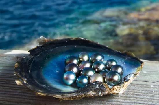 大溪地黑珍珠,神秘冷艳的美