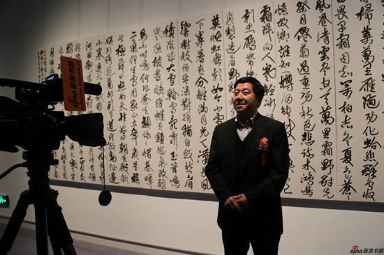 中国书法家协会副主席宋华平接受新浪书画采访