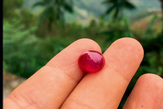 切割成素面的元江红宝石颜色鲜艳如血。