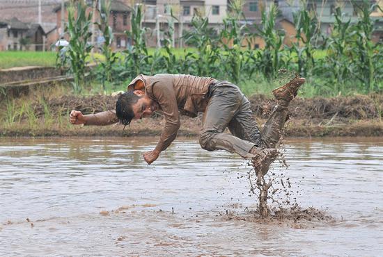 自由耕种,2014,图片来源:艺术家厉槟源