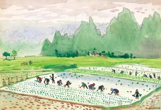 插秧,周令钊,1962