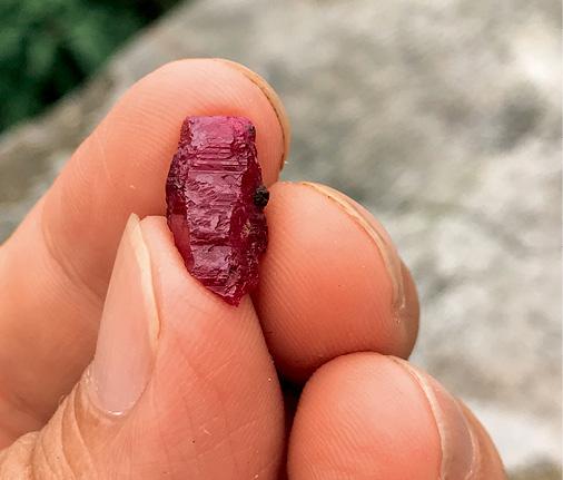元江红宝石的桶状晶形,这种具有半自形的晶形在当地红宝石原石中不常见。