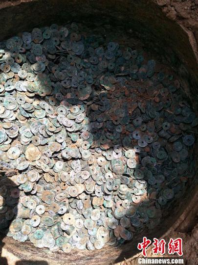 瓮中的古钱币。南和县文保所供图