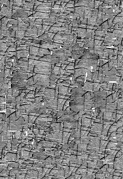 苏岩声作品《浮影--3》凸版、纸本120cm×70cm、2018年、苏岩声