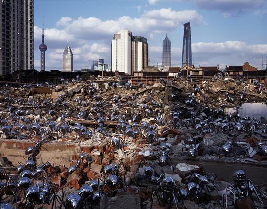 《迁徙时代》-185x150cm上海摄影图片 2008