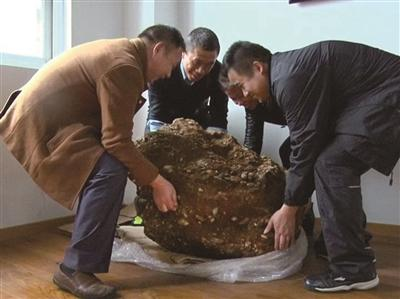 """才挖掘出的""""神罐"""",4个大人都抬不动。 通讯员 叶方龙 摄"""