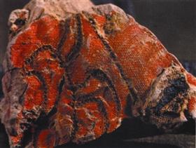 从西周蚕丝的考古发现看古代丝绸之路文化的传播