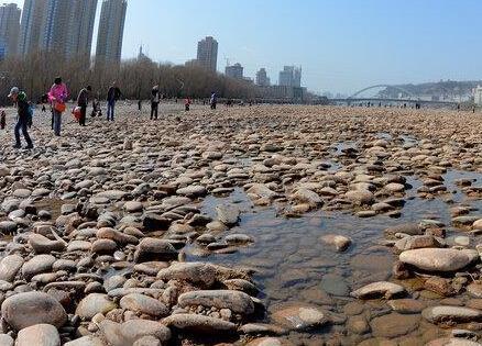 市民黄河捡石头:捡石大军散布河床 对警示牌不屑一顾