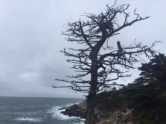 环荜盦不远处的海边风光