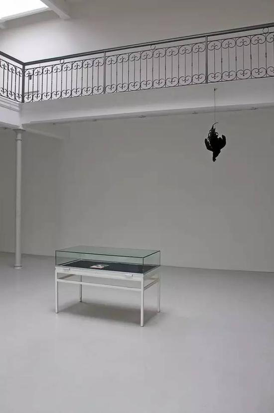 John Murphy    Opened in a Cut of Flesh    Stuffed Black Rooster, vitrine, publication    Variable dimensions