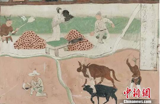 图为:莫高窟第61窟《弥勒经变之农作图-五代》。如果暂时抛开宗教意义,我们会发现古人将自己的美好愿望、对幸福生活的理解间接地呈现在久远的佛国世界之中。 崔琳 摄