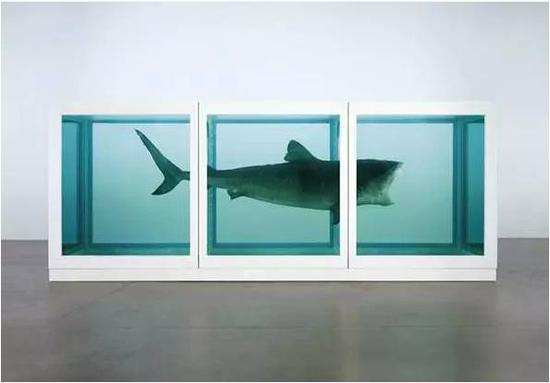 《生者对死者无动于衷》,by Damien Hirst, 1991