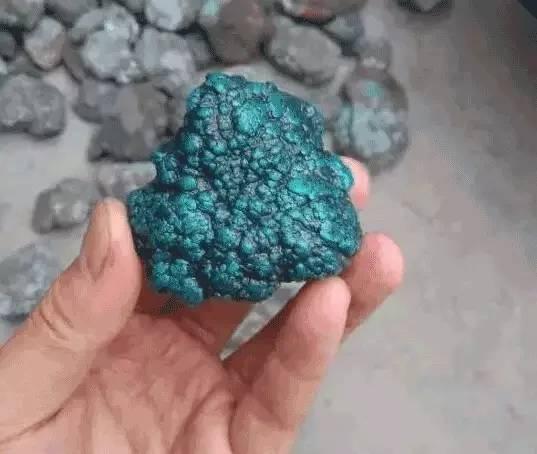 绿松石还分软引籽和硬引籽 你知道吗