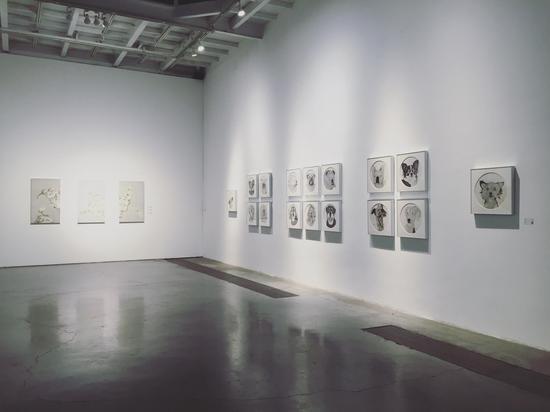 ▲ 展览现场 (3)