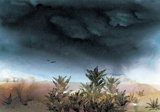 14自然物语系列—大漠
