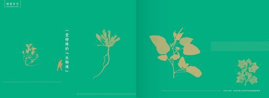 """《艰苦岁月》长征手绘故事册之《一堂特殊的""""生物课""""》内页效果图"""