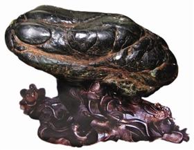 最爱青蛙奇石